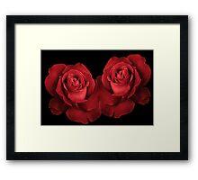 Red Roses Framed Print