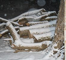 Warmth in the Snow - A portrait of the wood pile by PlacesLived