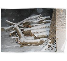 Warmth in the Snow - A portrait of the wood pile Poster