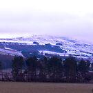 Coisterdale Moor by Trevor Kersley