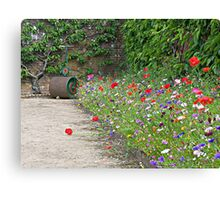 Wild Flower Border Canvas Print