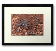 He's Safe Framed Print