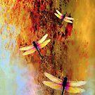 Ascension by Susan Ringler