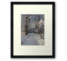 Snowy Woodland Scene Framed Print