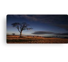 What A Character! Canvas Print