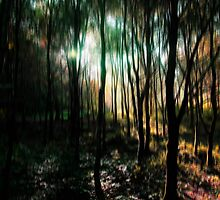 Enchanted Forest by Wrayzo