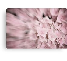 Dreamy Abstract Pale Pink Flower Photography Canvas Print