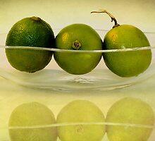 Limes by Priska Wettstein