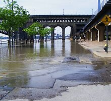 Mississippi River Flood Waters by barnsis