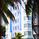 Scenes from Miami III by PJS15204