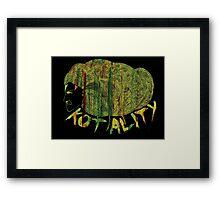 Kotality 3 Framed Print