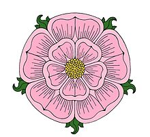 Pink Heraldic Rose by Richard Fay
