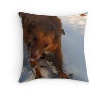 Snow Happy Throw Pillow