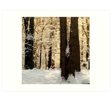 Frosty WinterRise Art Print