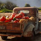 A cornacopia of trucks by Kimberly Kay Spies