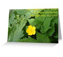 Restful Pastures Greeting Card