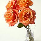 golden roses in vase by OldaSimek