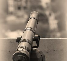 Old Cannon Shooter by snehit