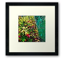 Web Spectrum Framed Print