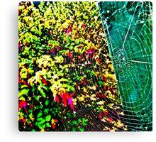 Web Spectrum Canvas Print