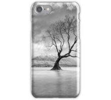 Autumn Lament iPhone Case/Skin
