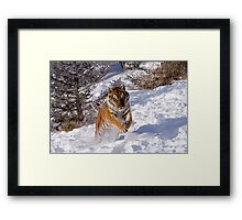 I'm Coming for You! Framed Print