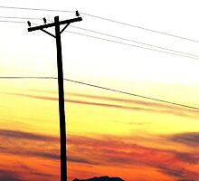 Sunsets and Powerlines by Jordan  Massanet