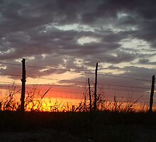 Texas Sunset by Robert Shiflet
