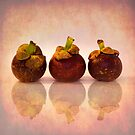 Purple Mangosteen by Priska Wettstein