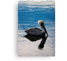 Pelican In Blue Sunset Canvas Print