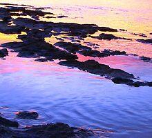 Sunset Oil - Aldinga Beach Reef at Sunset by Killashandria
