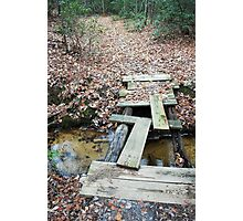 Two Different Paths Photographic Print