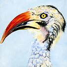 Zelda (Red-Billed Hornbill) by Acey Thompson