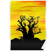 Boab Tree with Fire Sky Poster