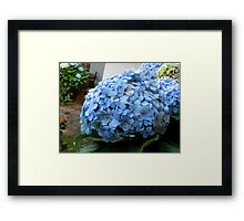 ©NS Blue Flowers IA. Framed Print