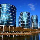 Oracle Campus, San Francisco Bay Area. 2010  by Igor Pozdnyakov