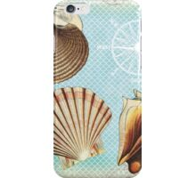 Vintage Seashells iPhone Case/Skin