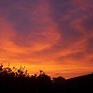Red sky by AmandaWitt