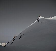 Mount Baker by Elisa Weiss