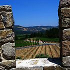An Embrasure of Castello di Amorosa. Napa Valley, California 2008 by Igor Pozdnyakov