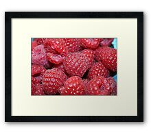 rich red berries Framed Print