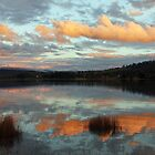Tamar River Reflections - Gravelly Beach, Tasmania by Ruth Durose