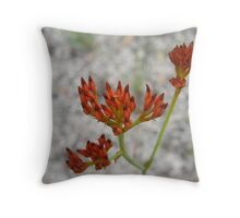 Blood Red Wildflower Throw Pillow