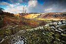 Gateway to Watendlath, Cumbria by David Lewins