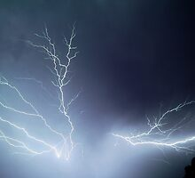 Lightning Tree - Blue by Richard Heath