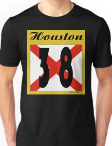 ALABAMA:  38 HOUSTON COUNTY Unisex T-Shirt