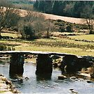 somewhere in Dartmoor  by Andrea  Thorpe