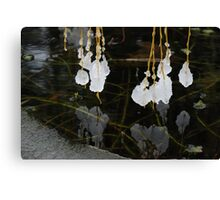 Willow Chandelier . Canvas Print