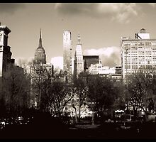 NYC skyline from Union Square  by ShellyKay