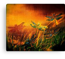 Dragonfly...Towards The Light 2 Canvas Print